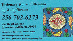 Andy Brown Visionary Aquatic Designs