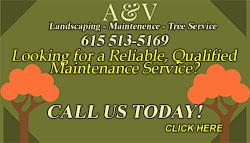 A&V Landscaping