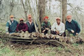 Alabama alligator hunt registration opens june 3 the for Alabama lifetime hunting and fishing license